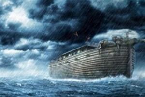 Наш дом, все таки, не Ноев ковчег, соседи?