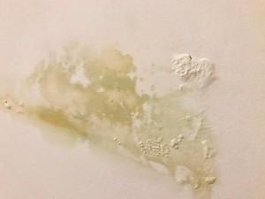 Пятно не только на стене, но и на совести ЖЭКа и равнодушных жильцов