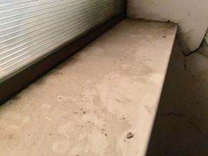 Фотофакт: пыль и бесхозяйственность!